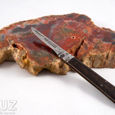 La curieuse histoire d'un petit couteau Véritable Pradel